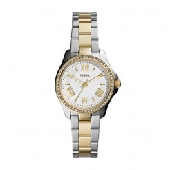 Fossil Cecile AM4579 Dameshorloge 29 mm